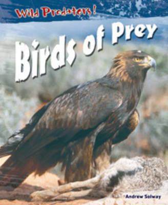 Birds Of Prey by Andrew Solway