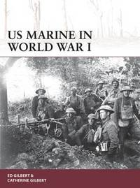 US Marine in World War I by Ed Gilbert image