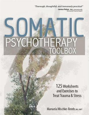 Somatic Psychotherapy Toolbox by Manuela Mischke-Reeds image
