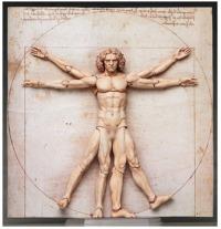 Figma: The Vitruvian Man - Articulated Figure
