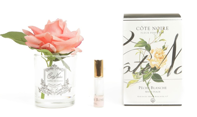 Cote Noire: Single Rose White Peach with fragrance - Clear