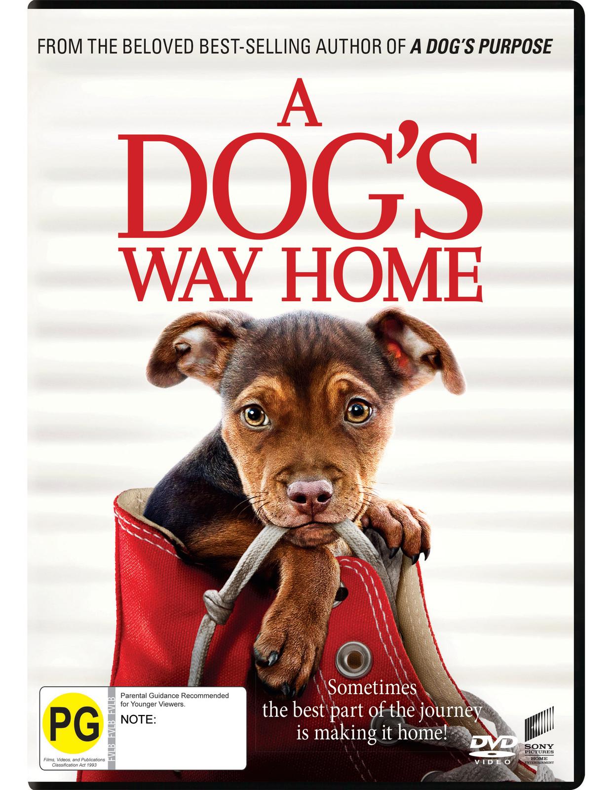 A Dog's Way Home on DVD image