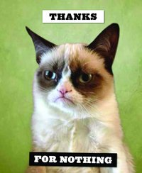 Grumpy Cat Notecards (20 Cards & Envelopes)