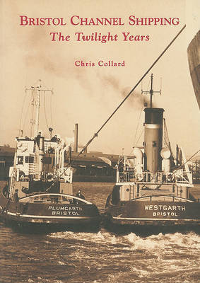 Bristol Channel Shipping by Chris Collard