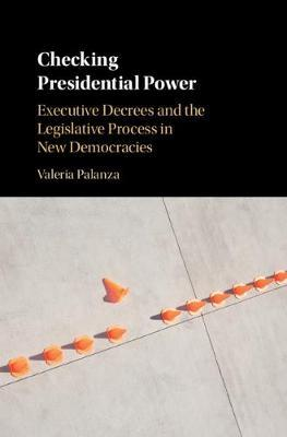 Checking Presidential Power by Valeria Palanza