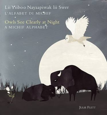 Owls See Clearly At Night by Julie Flett image