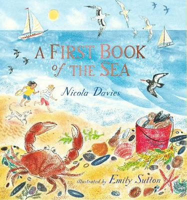 A First Book of the Sea by Nicola Davies image