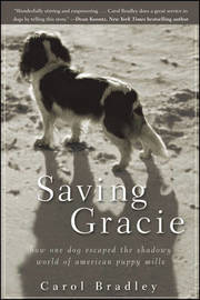 Saving Gracie by Carol Bradley image