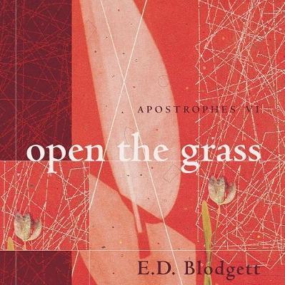 Apostrophes vi by E.D. Blodgett