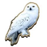 Harry Potter Hedwig Badge