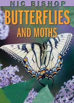 Nic Bishop: Butterflies and Moths by Nic Bishop