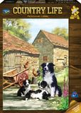 Holdson: 1000 Piece Puzzle Country Life Farmhouse Collies
