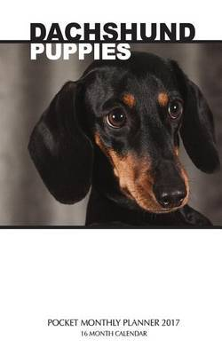 Dachshund Puppies Pocket Monthly Planner 2017 by David Mann image