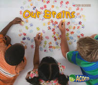 Our Brains by Charlotte Guillain image