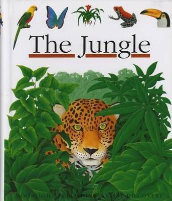 The Jungle by Rene Mettler image