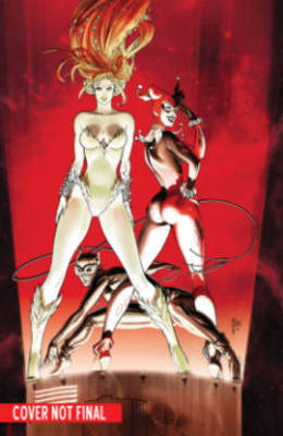 Gotham City Sirens Book One by Paul Dini