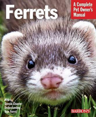 Ferrets by Christine Mathis