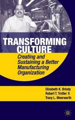 Transforming Culture by Elizabeth K Briody