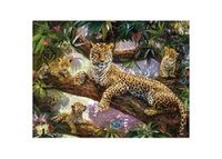 3D LiveLife: Tree Top Leopards