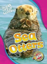Sea Otters by Nathan Sommer