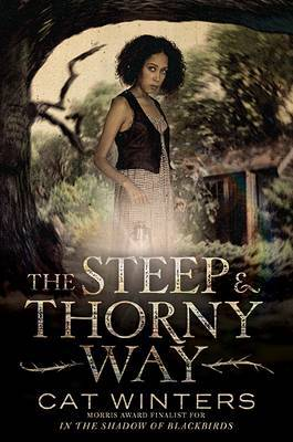Steep and Thorny Way, The by Cat Winters image
