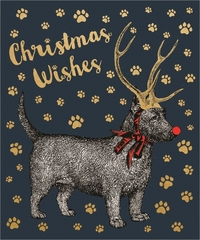 Chase & Wonder: Individual Christmas Card - Dog With Antlers image