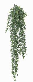 General Eclectic Artificial Plant - Silver Dollar Vine (78cm)