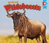 All about Wildebeests by Katie Gillespie image