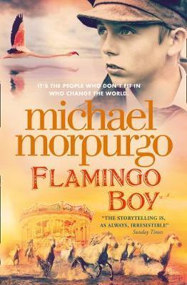 Flamingo Boy by Michael Morpurgo image