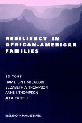 Resiliency in African-American Families image
