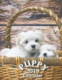 Puppy 2019 Calendar by Wall Publishing