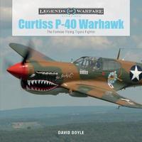 Curtiss P-40 Warhawk by David Doyle image