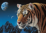 Holdson: Wild at Heart 1000pc puzzle - Tiger Night