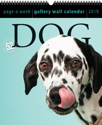 2019 Dog Gallery Wall Page-A-Week Gallery Wall Calendar by Workman Publishing