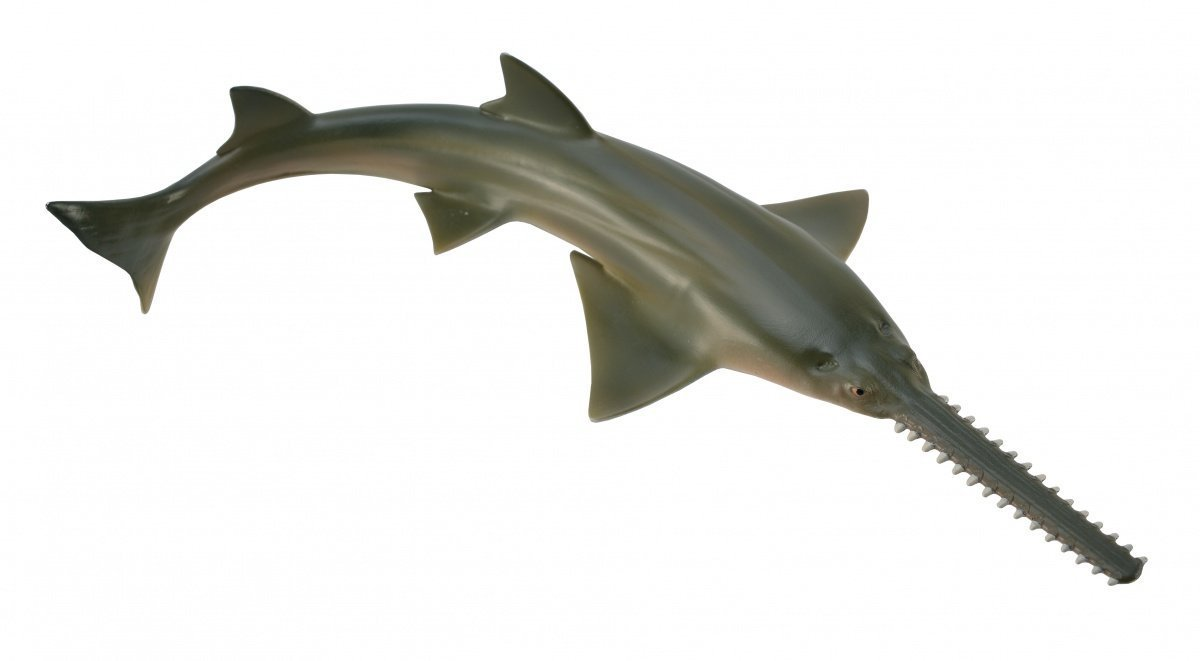 CollectA - Sawfish image