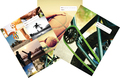 Spencil: Sports Collage A4 Book Cover - Assorted (3 Pack)