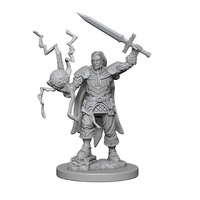 Pathfinder Deep Cuts: Unpainted Miniatures - Human Male Cleric
