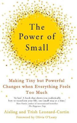 The Power of Small by Aisling Curtin image