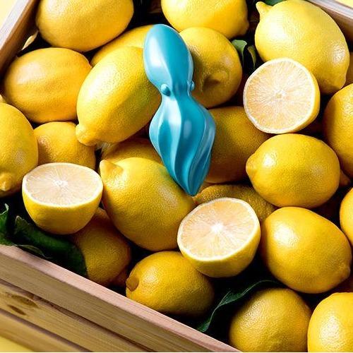 Octo - Citrus Reamer