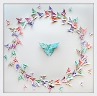 Short Story: Circle Of Life (Pastel Butterflies) - Special Edition Frame (White)