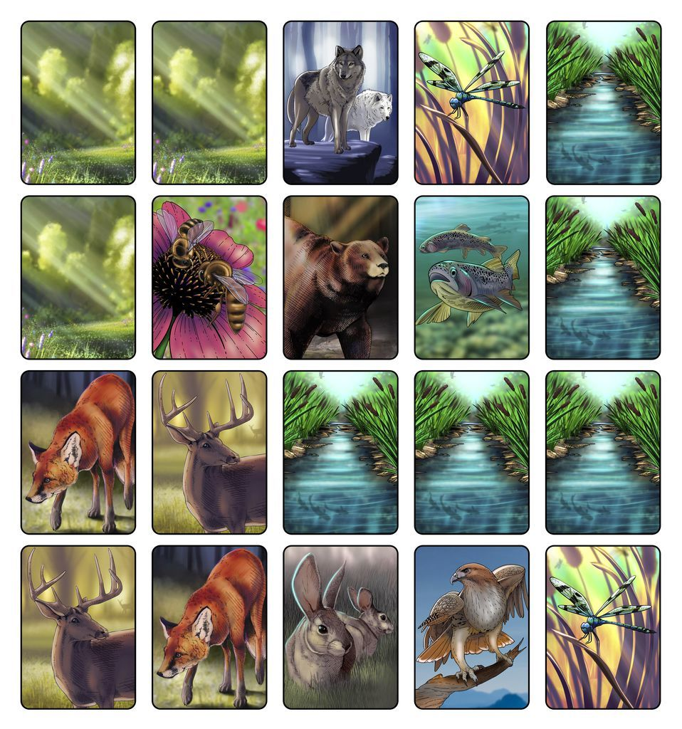 Ecosystem - Card Game image