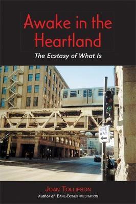 Awake in the Heartland by Joan Tollifson