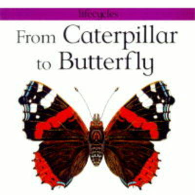 From Caterpillar to Butterfly by Stewart Legg image