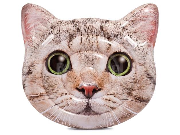 Intex: Cat Face Island