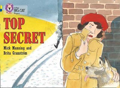 Top Secret by Mick Manning