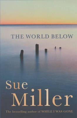 The World Below by Sue Miller image