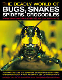 The Deadly World of Bugs, Snakes, Spiders, Crocodiles and Hundreds of Other Amazing Reptiles and Insects by Barbara Taylor