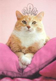 Woof & Purr Greeting Card - Queen Cat