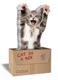 Mustard: Cat In A Box - Novelty Sticky Notes