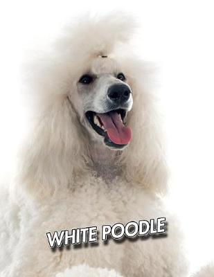 White Poodle by Notebooks Journals Xlpress
